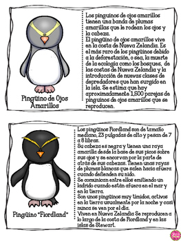PENGUINS IN SPANISH ~ AN INFORMATIONAL TEXT