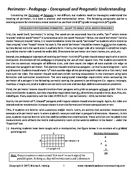 PERIMETER: Pedagogy - Conceptual and Pragmatic Understanding - FREE
