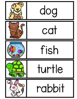 PET Word Cards {Capital & Lowercase}