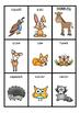 PHONICS - DONKEY CARD GAMES - 31 games - Phases 1 to 5 - ALL PHONICS