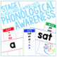 PHONOLOGICAL AWARENESS // STAGE 1 // PHONICS AND COMMON WORDS BUNDLE