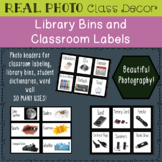 PHOTO Library Bins and Classroom Labels