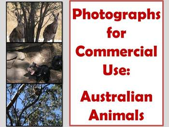 PHOTOGRAPHS: Australian Animals for commercial use.