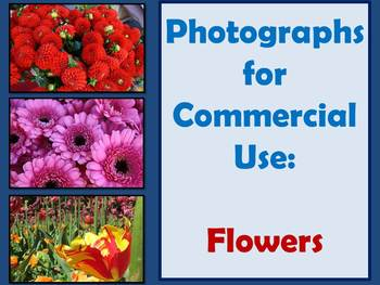 PHOTOGRAPHS: Flowers for commercial use.