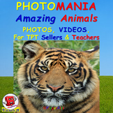 PHOTOMANIA: AMAZING ANIMALS Photos and Videos