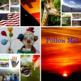 PHOTOMANIA SAMPLER: PHOTOS, VIDEOS, GIFS, ….  FREEBIE