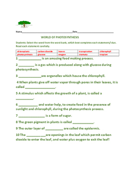PHOTOSYNTHESIS: QUIZ/ FILL-IN ACTIVITY