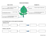 PHOTOSYNTHESIS Worksheet SC.912.L.18.7 & SC.912.L.18.9