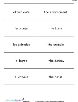 PHYSICAL ENVIRONMENT FLASHCARDS (SPANISH 2016 EDITION)