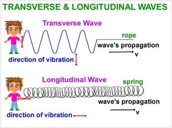 PHYSICS: WAVES: Longitudinal & Transverse Waves Properties. Test Prep Worksheets
