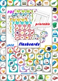 PICTURE UNIVERSAL FLASHCARDS LANGUAGE LEARNING