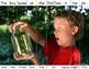 PICTURE PUZZLES Building Sentences FILE FOLDER Activities for Special Education
