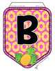 PINEAPPLE PENNANT BANNER, BULLETIN BOARD LETTERS, PINK & YELLOW