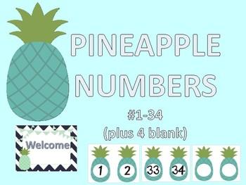 PINEAPPLE TEALTHEME NUMBERS 1-34