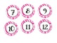 PINK Zebra Jungle Themed Numbers 1-100 (Calendar, Numberline)