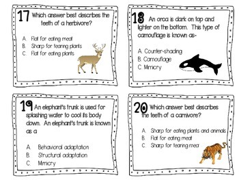 PLANT & ANIMAL ADAPTATIONS {TASK CARDS}