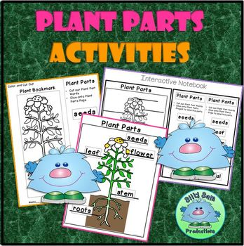 PLANT CRAFTIVITIES ACTIVITIES INTERACTIVE NOTEBOOK