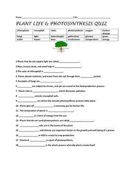 PLANT LIFE & PHOTOSYNTHESIS QUIZ, GRADES 5-8