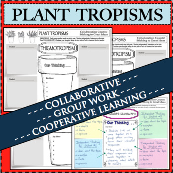 PLANT TROPISMS Biology Collaboration Activity Stickie Notes Group Work