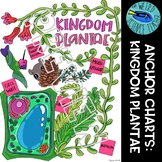 SCIENCE SCAFFOLDED NOTES/ ANCHOR CHART: PLANT ANCHOR CHART