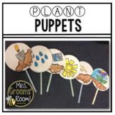 PLANTS:  PUPPETS