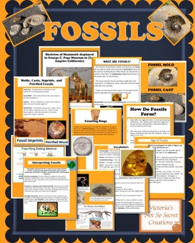 PLANTS AND ANIMALS  FOSSILS  POWERPOINT with Vocabulary Page