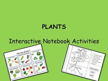 PLANTS - Interactive Notebook Activities