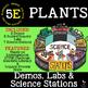 PLANTS - Life Science Unit ~ 5 E Model