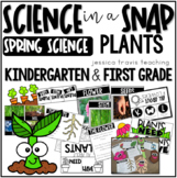 PLANTS! ~ Science in a Snap!