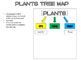 PLANTS Tree Map and Activities