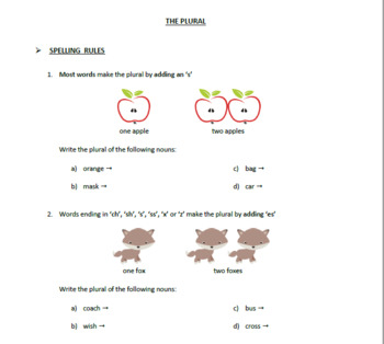 ENGLISH PLURAL NOUNS -  SPELLING RULES