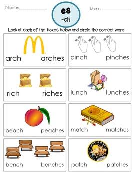 Plural Nouns Regular -ES ending