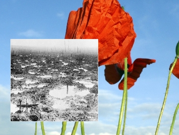 POETRY OF THE FIRST WORLD WAR POWERPOINT WITH NARRATION