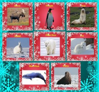 Polar Animals - Penguin - Polar Bear -Cold Deserts - PowerPoint presentation