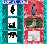 Polar Animals - Penguin - Polar Bear -Cold Deserts - Power