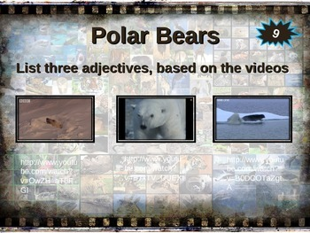 POLAR BEAR: 10 facts. Fun, engaging PPT (w links & free graphic organizer)