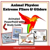 PowerPoint & Study Guide - Extreme Flying & Gliding Animals