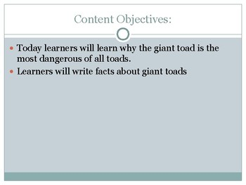 PPT- All About Poisonous Toad