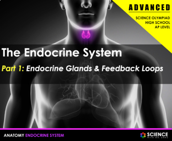 PPT - Endocrine System (ADVANCED) - Homeostasis, Hormones, Glands, Disorders
