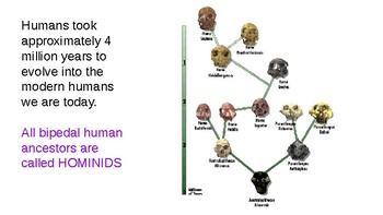 PPT:Intro to Human Evolution