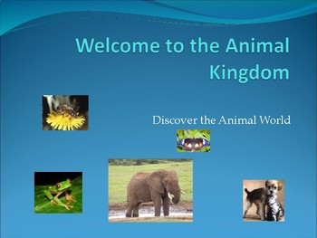 PPT- Welcome to the Animal Kingdom!