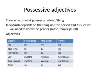 PPT to teach Spanish possessive adjectives