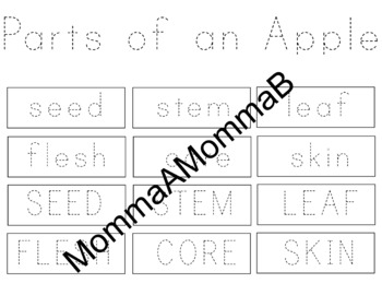 PRE-K APPLES UNIT | Diagram Labels | Coloring Sheets | Assorted Images