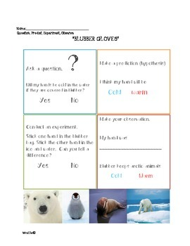"ARCTIC ANIMALS PRESCHOOL SCIENCE CENTER~POLAR BEARS~WALRUSES~ ""BLUBBER GLOVES"""