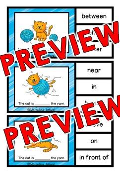 PREPOSITIONS ACTIVITY (CLIP CARDS)