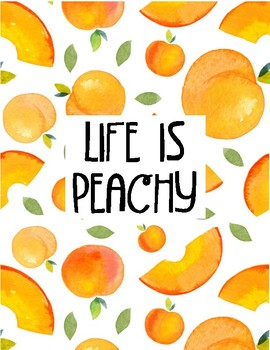 PRINTABLE TEACHER GRADEBOOK & PLANNER: Peaches