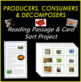 PRODUCERS, CONSUMERS AND DECOMPOSERS READING PASSAGE AND CARD SORT PROJECT