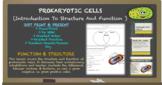 PROKARYTIC CELLS