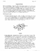 PROTISTS PRACTICE PAGES