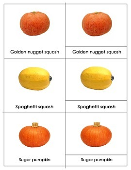 PUMPKIN AND SQUASH VARIETIES